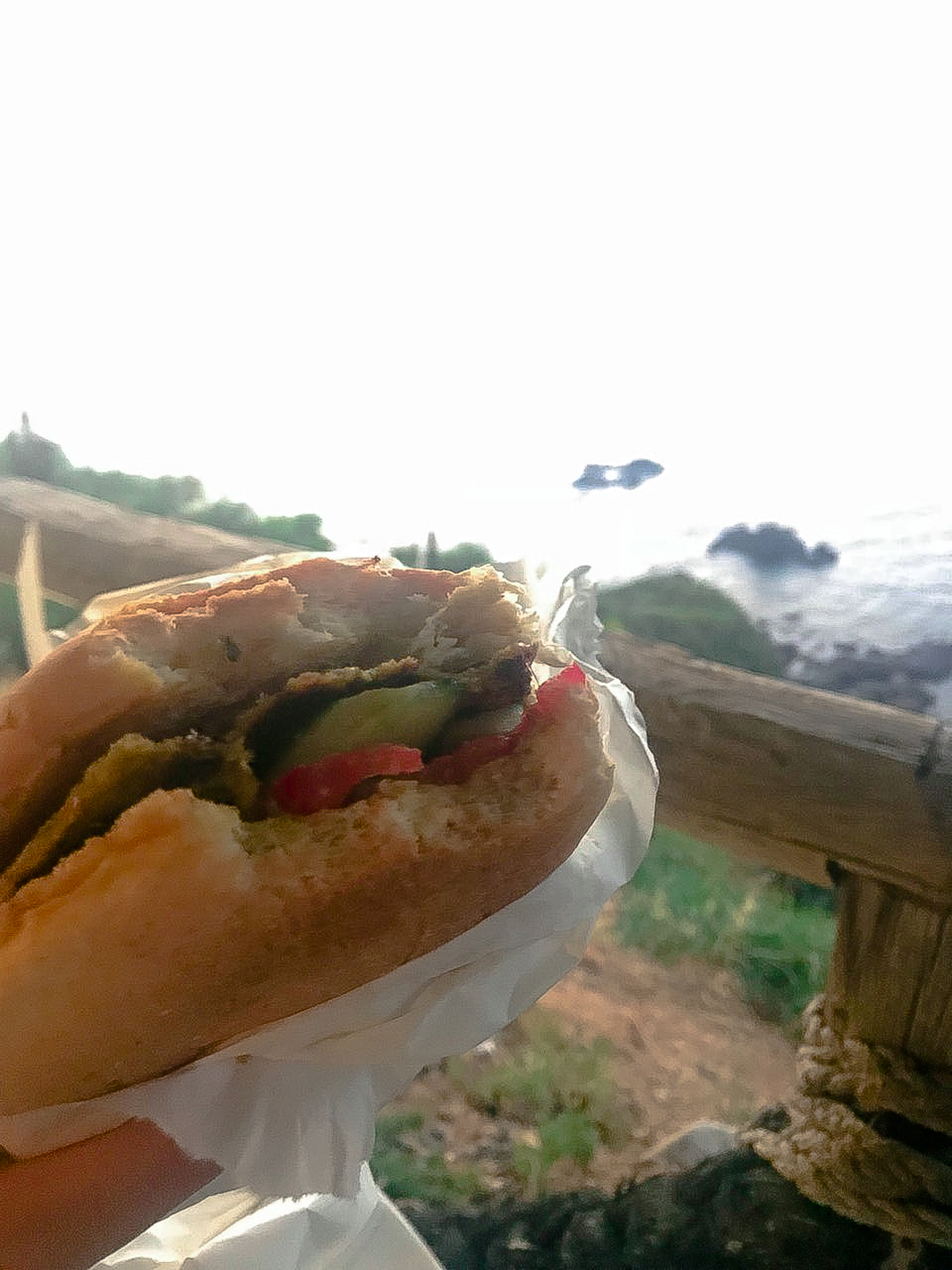 Koullas-sandwiches-food-truck-pomos-vegan-cyprus1